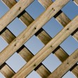 Lattice Fence — Stock Photo