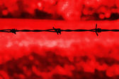 Barbed wire against a red background — Stock Photo