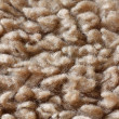 Stock Photo: Carpet fibres close up