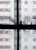 View through old windows — Stock Photo