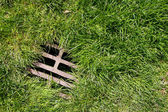 Grass and drain background — Stock Photo