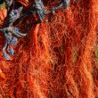 Orange fishing net drying in the sun — Stock Photo #30897099