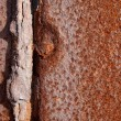 Rusty metal background — Stock Photo