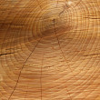 Sawn timber showing annual rings — Stock Photo #30955365