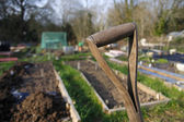 Old wooden spade handle in an allotment — Stock Photo
