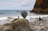 Stones balanced on a pebble beach — Stock Photo