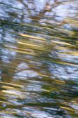 Motion blurred background — Стоковое фото