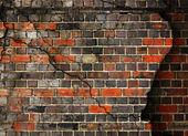 Kırık tuğla duvar arka plan — Stok fotoğraf