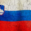 Grunge Slovenia flag — Stock Photo #31053967