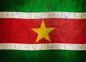 Grunge Suriname flag — Stock Photo
