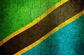 Grunge Tanzania flag — Stock Photo