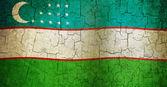 Grunge Uzbekistan flag — Stock Photo