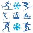 Winter sports icons — Stock Vector #12727981