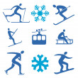 Stock Vector: Winter sports icons