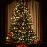 Christmas Tree — Stock Photo #2743945