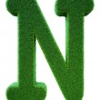 Letter of N from a green grass. Alphabet from a grass. Isolated — Stock Photo #40472727