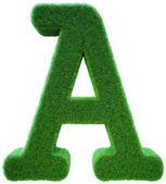 Lettre d'une d'une herbe verte. alphabet de l'herbe. isolé — Photo