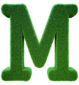 Letter of M from a green grass. Alphabet from a grass. Isolated — Stock Photo