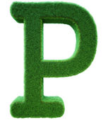 Yeşil çim p harfi. alfabenin den bir ot. izole — Stok fotoğraf