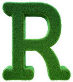 Letter of R from a green grass. Alphabet from a grass. Isolated — Stock Photo