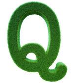 Brev av q från ett grönt gräs. alfabetet från ett gräs. isolerade — Stockfoto