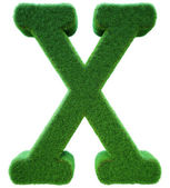 Letter of X from a green grass. Alphabet from a grass. Isolated  — Stock Photo