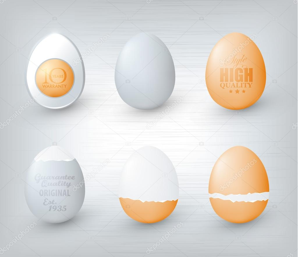Egg illustration  Stock Vector #12442221