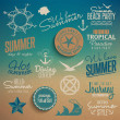 Summer vintage elements — Imagen vectorial