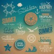 Summer vintage elements — Image vectorielle
