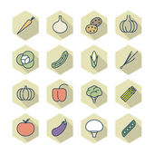 Thin Line Icons For Vegetables — Stock Vector