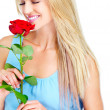 Each rose is a work of art - Stock Photo
