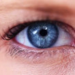 Woman&amp;#039;s eye - 