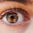 The windows of the soul - Stock Photo