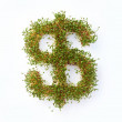 Royalty-Free Stock Photo: The grass is always greener when money is involved