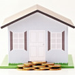 Royalty-Free Stock Photo: Need a home loan? Try our bank!