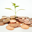 The concept of growing money - 