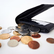 The recession hitting the wallet - Stock Photo