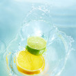 The citrus pairing that makes a splash! - Stock Photo