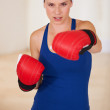 She&#039;s a fighter! - Stockfoto