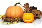 Halloween Pumpkin — Stock Photo