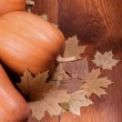 Autumn pumpkins — Stock Photo #13651269