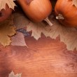 Autumn pumpkins — Stock Photo #13651271