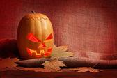 Halloween dynia — Zdjęcie stockowe