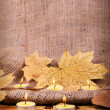 Royalty-Free Stock Photo: Autumn candle