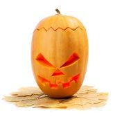 Halloween — Stock Photo