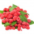 Foto de Stock  : Fresh raspberry