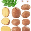 Potatoes — Stock Photo #24219863