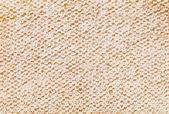 Plaster miodu — Zdjęcie stockowe