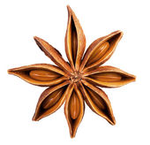 Anise star  — Stock Photo