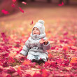Portrait of a baby with autumn — Stockfoto